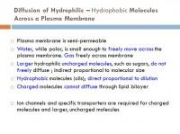 Difussion of hydrophilic - Hydrophobic